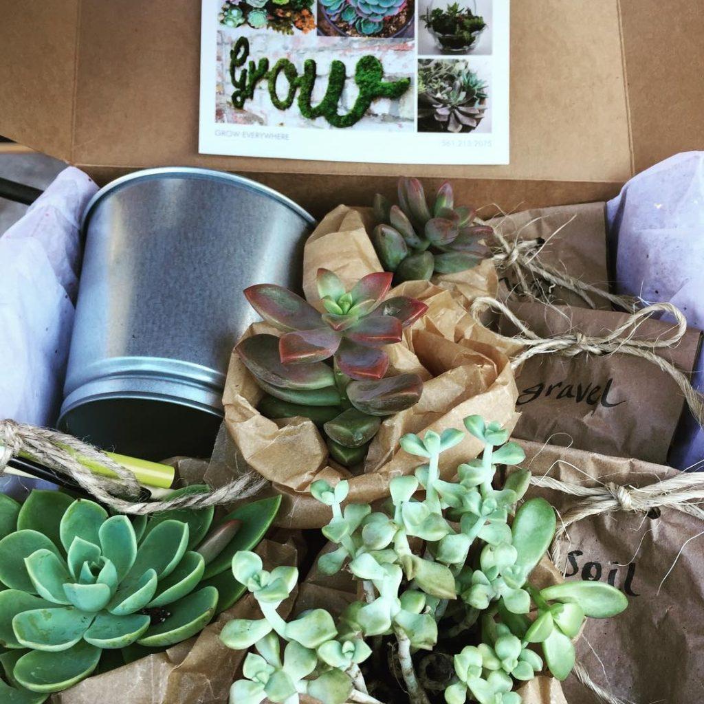 grow garden boxes 12 1080sq