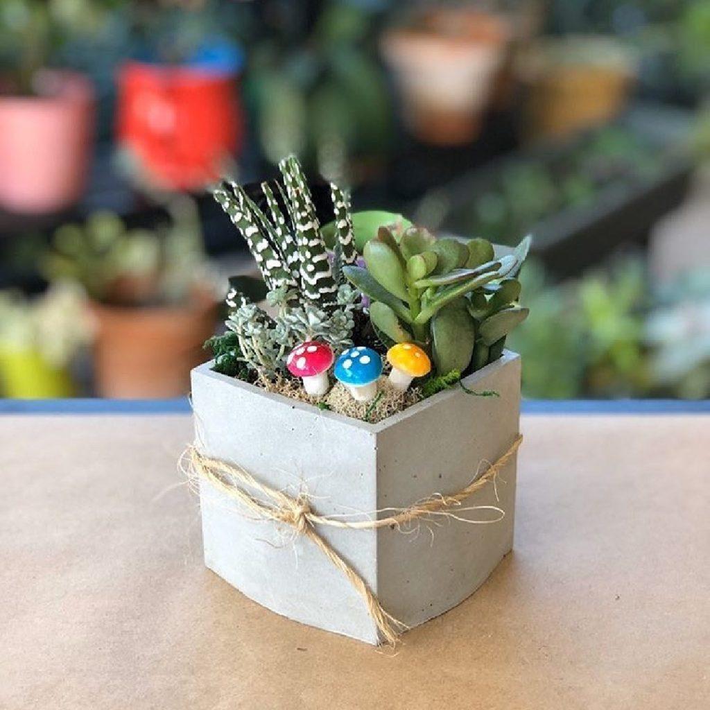 grow garden boxes 8 1080sq